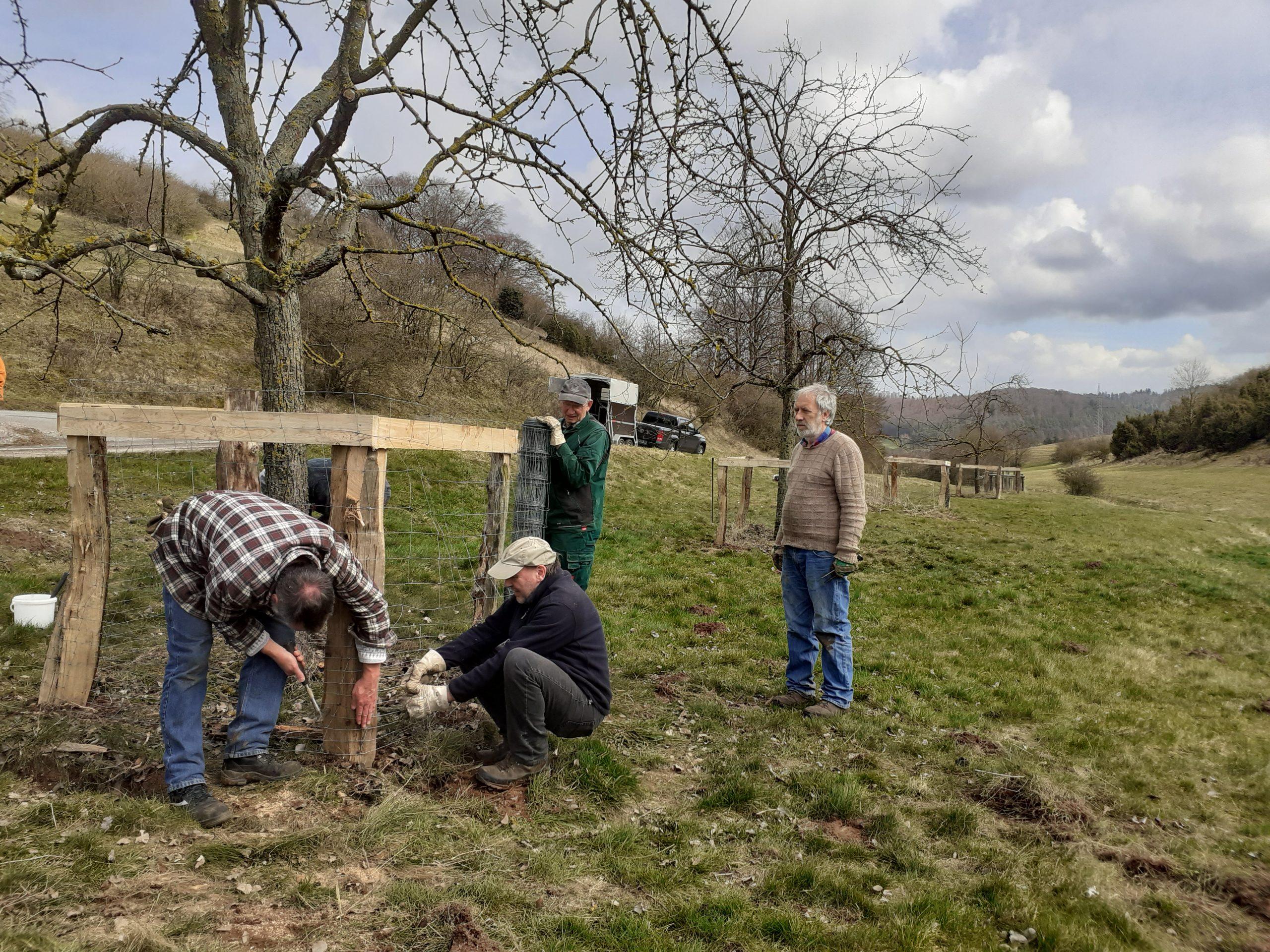 Streuobstwiesen – Strukturvielfalt einer bäuerlichen Kulturlandschaft
