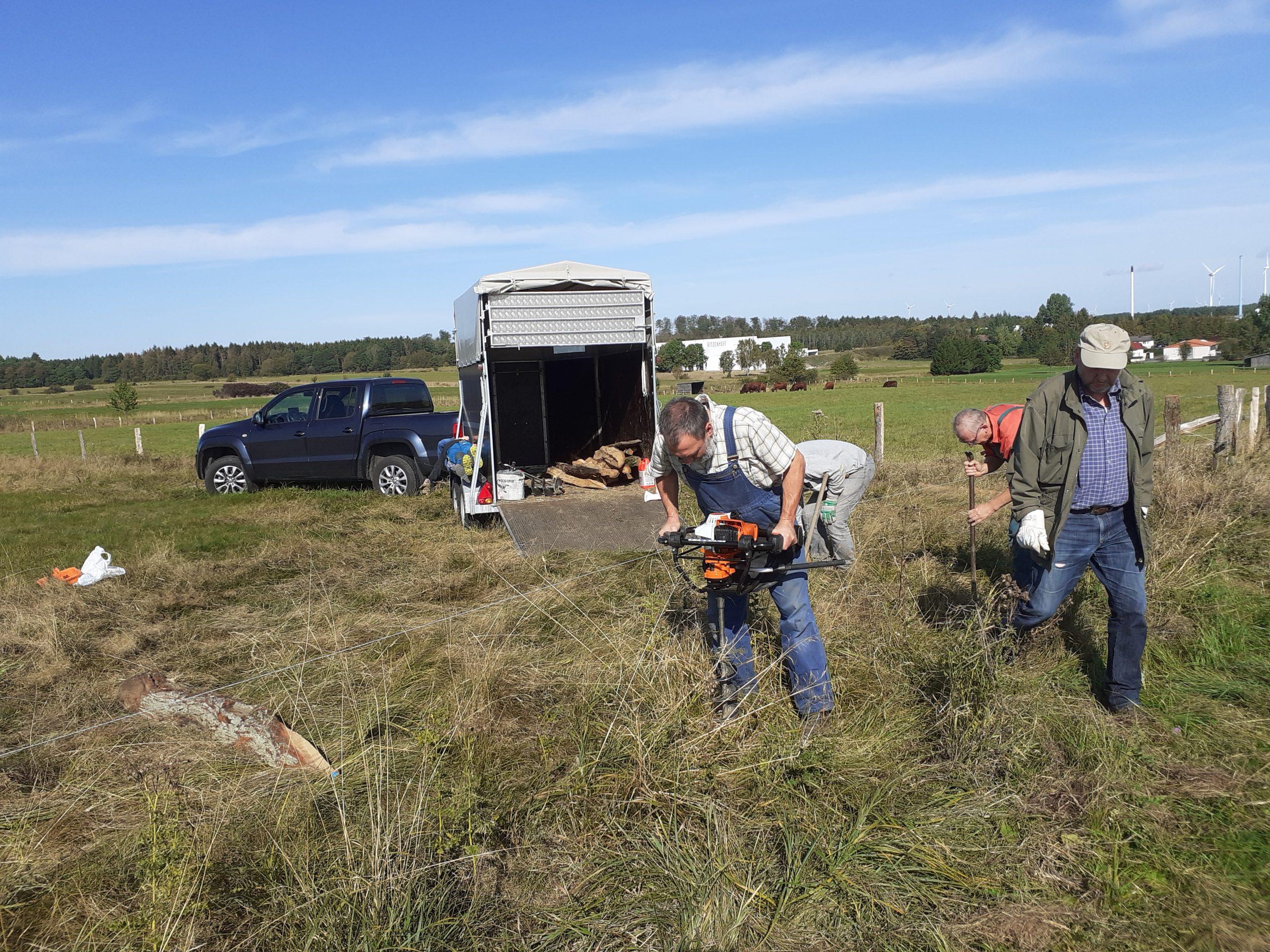 Rinder pflegen Wiesen-Lebensräume  –  Viel Arbeit für die Menschen!