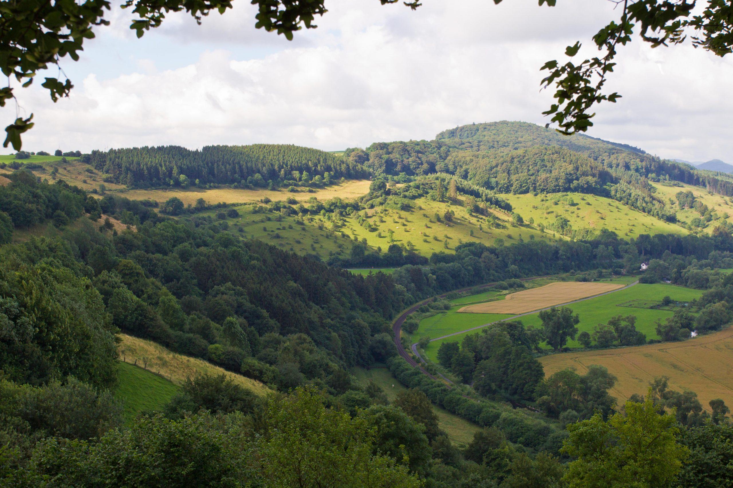 Zum faktischen Vogelschutzgebiet Diemel- und Hoppecketal mit Wäldern bei Brilon und Marsberg: